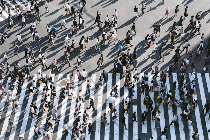 Aerial view of people walking at a crosswalk